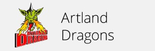Alles zu den Dragons